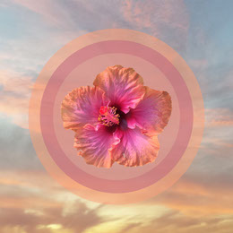 Light Toned Flower Composite in Landscape, Instagram Post Artists Collection: Adobe Spark Stylemakers