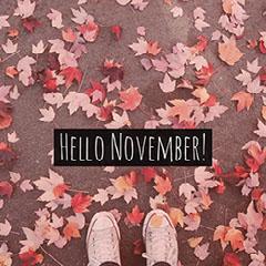 Pink Warm Toned Hello November Instagram Meme Post Leaf