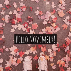 Pink Warm Toned Hello November Instagram Meme Post Meme
