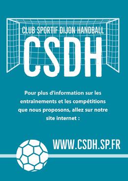 Blue Handball Goal Poster A4 Prospectus