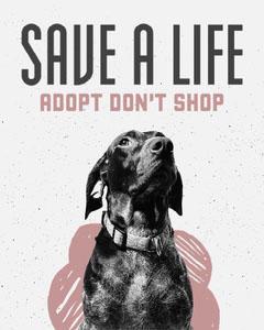 Grey & Dusky Pink Adopt Don't Shop Instagram Portrait Dog Adoption Flyer