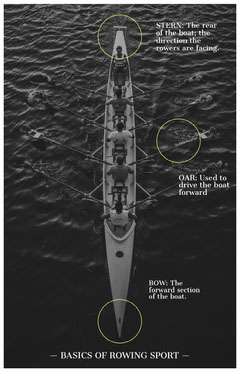 Black and White Rowing Sport Basics Infographic Water