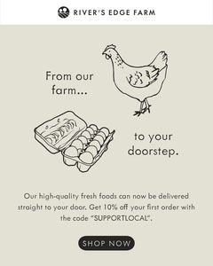 Gray Chicken and Eggs Illustration Farm Ad Discount