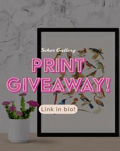 Pink Print Giveaway Instagram Portrait  Bird