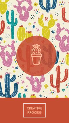 Colorful, Cactus Pictures Instagram Story Cactus
