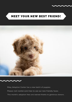 MEET YOUR NEW BEST FRIEND! Dog Flyer