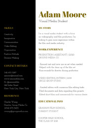 Gold and Black Film and Media Industry Job Student Resume Job Application