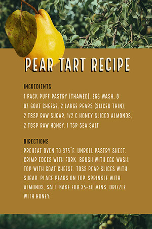 Yellow and Brown Warm Toned Pear Tart Recipe Instagram Story Receptenkaart