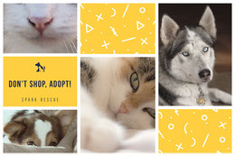 Don't shop, adopt! Colagem de fotos