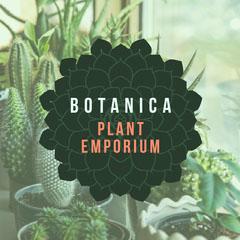 BOTANICA Plants