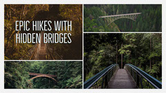 Hiking Blog Post Graphic with Bridges in Forest Collage Forest