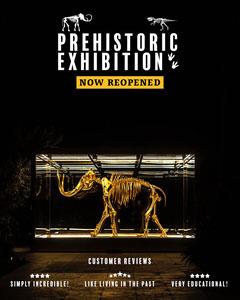 Prehistoric Exhibition Instagram Portrait Exhibition