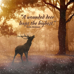 Golden Deer Winter Quote Instagram Square Gold