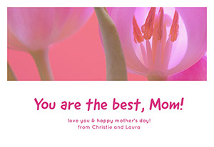 Pink and White Mothers Day Facebook Card Mother's Day Messages