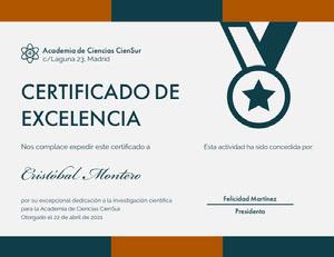 CERTIFICADO DE <BR>EXCELENCIA  Certificado
