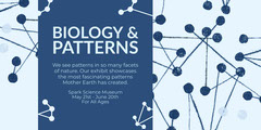 BIOLOGY  & PATTERNS Science