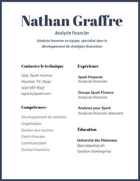 Nathan Graffre CV professionnel