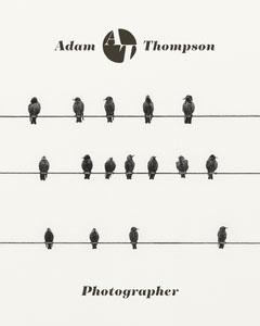 Adam Thompson Photographer Photography