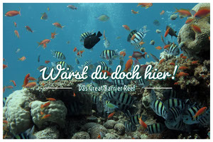 Great Barrier Reef postcards  Postkarten