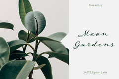 Green Plant Photo Botanic Gardens Postcard Garden