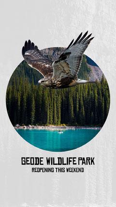 Forest Lake Wildlife Park IG Square Lake