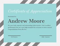Hair Stylist Certificate of Appreciation Hair Salon