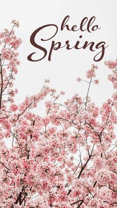 spring instagram story Sky