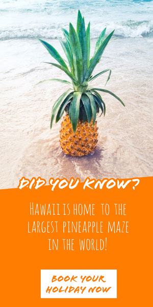 Hawaii Pineapple Travel and Tourism Vertical Ad Banner Reclamebanner