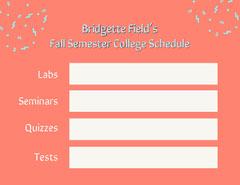 Quizzes College