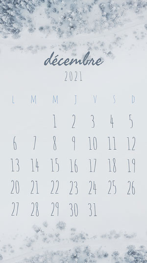 Grey Winter December Phone Calendar  Calendrier