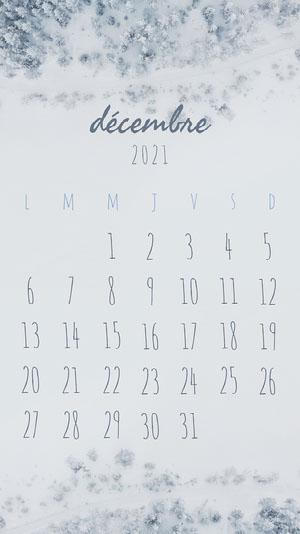 Grey Winter December Phone Calendar  Calendrier mensuel