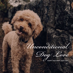 Unconditional <BR>Dog Love Dog Flyer