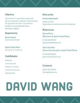 David Wang Currículum profesional