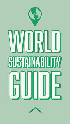 Green World Sustainability Guide Instagram Story  Guide