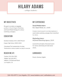 Pink SEO and Social Media Marketing Resume solicitud de empleo