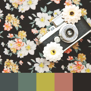 Color Palettes | Retro 4 101 Brilliant Color Combos