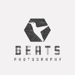 Gray and White Beats Photography Logo Square Photography