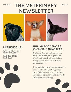 Dog Photos Veterinary Newsletter Newsletter
