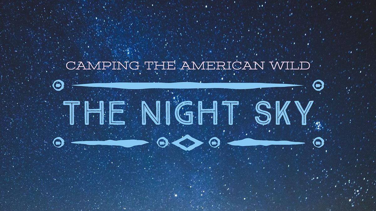 The night sky The night sky 