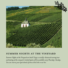 Green Virtual Vineyard Tour Instagram Square Ad Landscape
