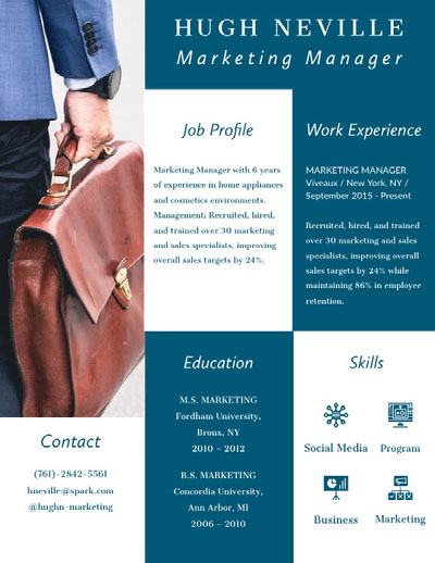 Infographic Resume Infographic Ideas