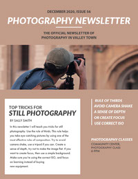 Brown Photography Tips Newsletter Newsletter Examples