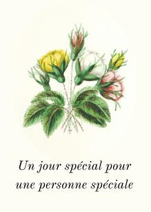 Personne spéciale A5 Card Carte d'anniversaire