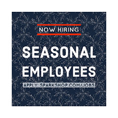 Blue and White Seasonal Employees Instagram Graphic Ad Now Hiring Flyer