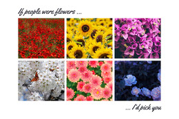 If people were flowers ... Colagem de fotos