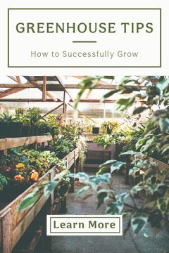 Green and White Greenhouse Tips Pinterest Garden
