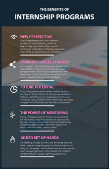 Pink and Navy Internship Program Infographic Infografica