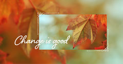 Orange Change Is Good Autumn Leaf Instagram Landscape  Positive Thought