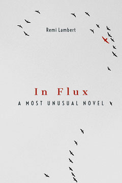 Grey With Flying Birds In Flux Book Cover Bird