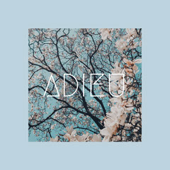 Pink and Blue Adieu Instagram Post CD Cover